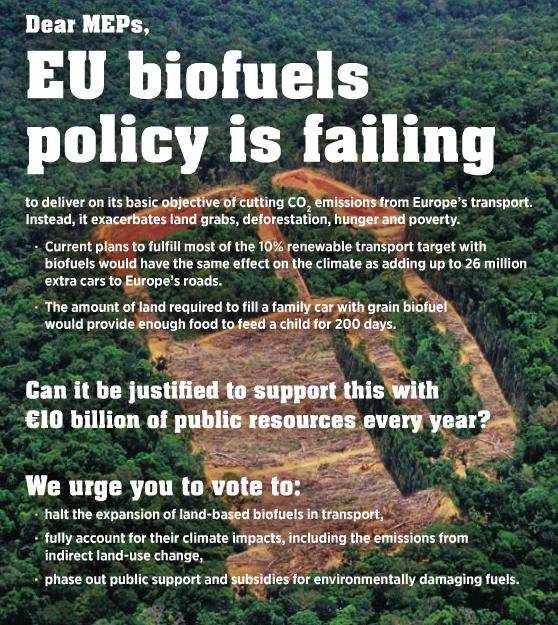 EU biofuels policy is failing