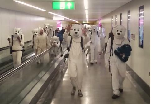 Polar bears leaving