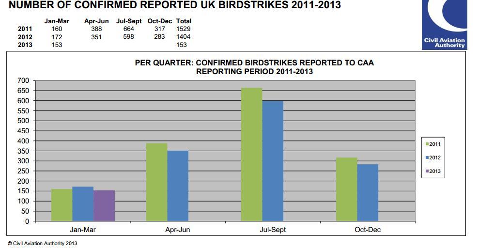 caa birdstrikes 2011 - 2013